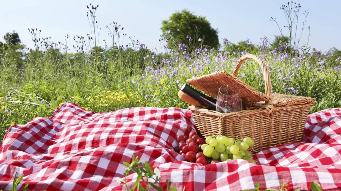 de-picnic-los-mejores-sitios-en-madrid-para-disfrutar-de-una-comida-campestre